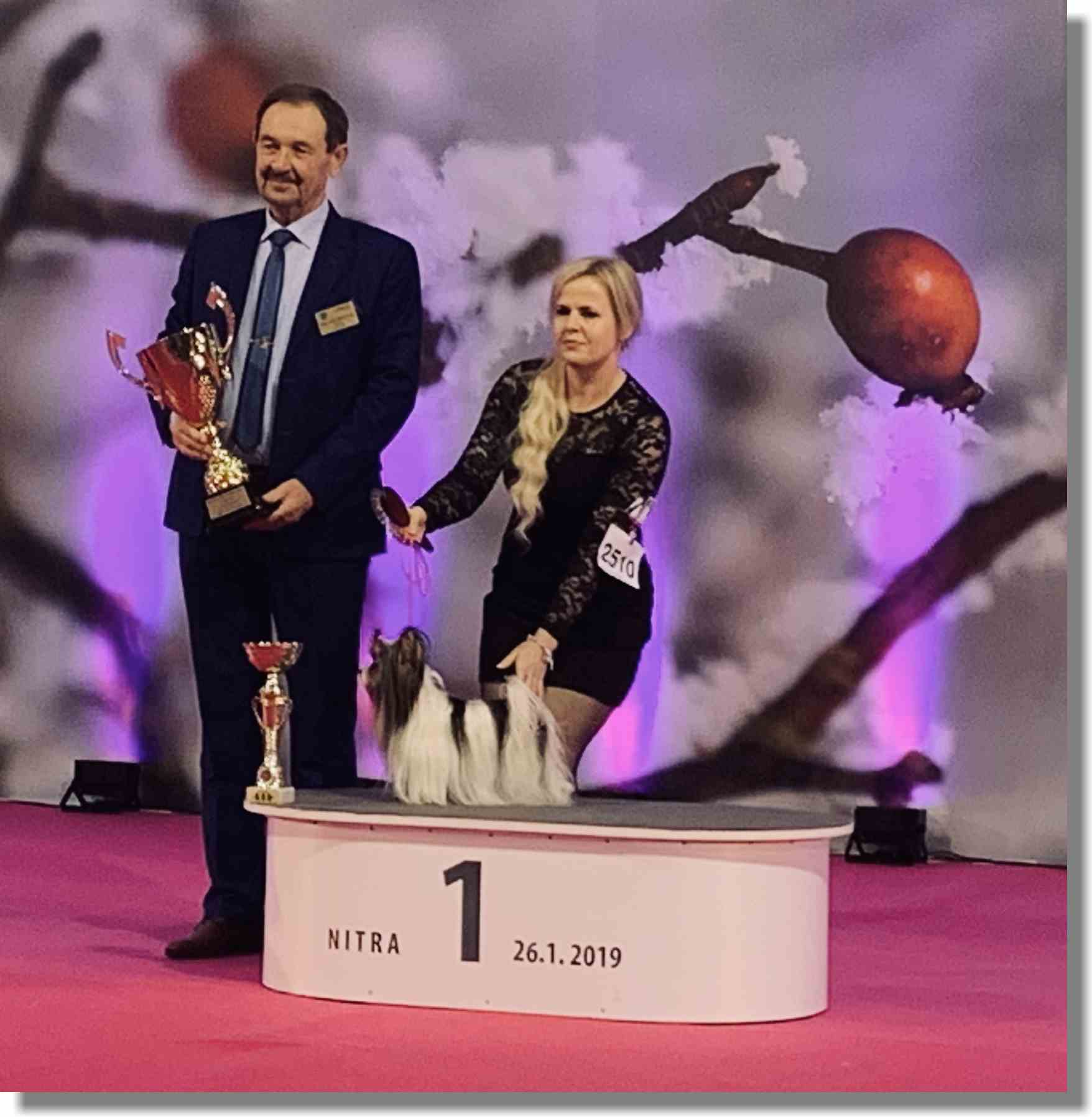 NON FCI RECOGNIZED BREEDS COMPETITIONS Judge Miroslav Václavík (CZ) BEST IN  GROUP WINTER SHOW 26.1.2019 – Nitra (SK) Show Ch. Grand Ch. Multi Ch. Multi JCh. Malenkiy Sekret ARABESKA